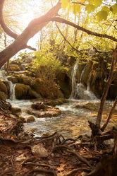 Bild mit Natur, Wasser, Bäume, Wälder, Wald, Baum, Wasserfall, Park