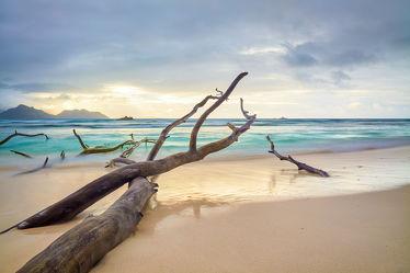 Bild mit Wetter, Sand, Urlaub, Baum, Strand, Meer, Insel, Paradies, Meer und Strand, Langzeitbelichtung, la digue, Seychellen, Gezeiten, Praslin
