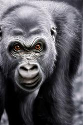 Bild mit Natur, Menschenaffen, Affe, Kinderzimmer, Zoo, Kunst fürs Kinderzimmer, Dschungel, Gorilla, King Kong, Silberrücken