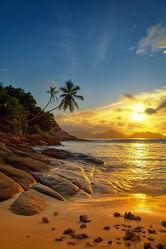 Bild mit Natur, Wasser, Gewässer, Wellen, Sonnenuntergang, Palmen, Sonnenaufgang, Strand, Sandstrand, Am Meer, ozean