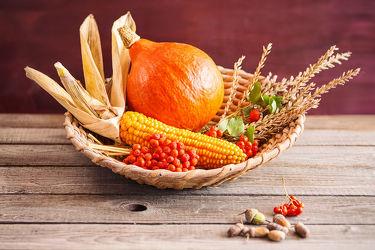 Bilder mit Lebensmittel