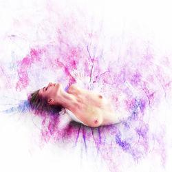 colored passion 1
