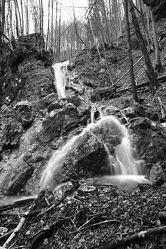 Bild mit Natur, Wasser, Wälder, Wald, Wasserfall, schwarz weiß, SW