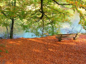 Herbsttag am Bärensee