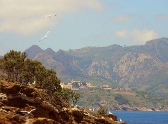 Insel Elba