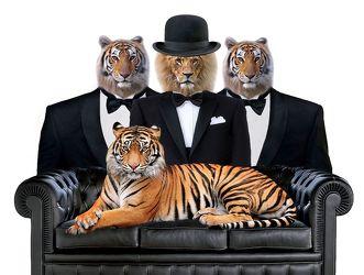 Bild mit Tiere, Löwen, Löwe, Abstrakt, Abstrakte Kunst, Wildtiere, Tiger, smoking, bowler, Hut
