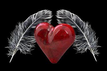 Bild mit Flügel, Federn, romantik, Freundschaft, romantisch, Herz, Liebe, Feder, Love, paare, verliebt, verliebte