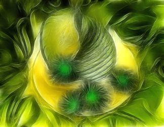 Bild mit Kunst, Pflanzen, Blumen, Blume, Pflanze, Abstrakt, Muschel, Muscheln, Floral, Stilleben, Blüten, Florales, blüte