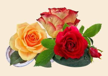 Bild mit Pflanzen, Blumen, Rosen, Blume, Pflanze, Rose, rote Rosen, gelbe Rosen, Floral, Stilleben, Blüten, Florales, blüte, dekorativ, Dekoration