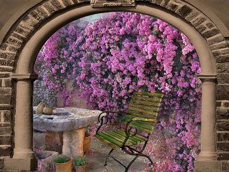 Bild mit Floral
