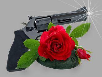 Bild mit Pflanzen, Blumen, Stein, Rosen, Steine, Blume, Pflanze, Rose, Wassertropfen, Floral, Stilleben, Blüten, Florales, Sterne, blüte, stern, Pistole, Revolver