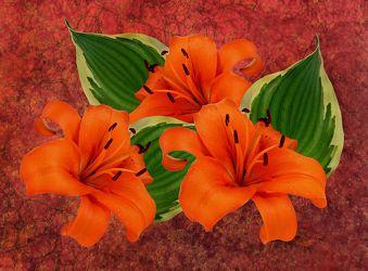 Bild mit Blumen, Blätter, Blume, Blatt, Lilie, Lilien, Floral, Stilleben, Blüten, Florales, blüte, dekorativ, Dekoration, texture