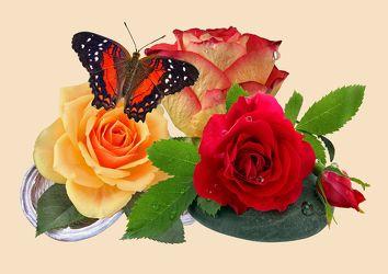 Bild mit Pflanzen, Blumen, Stein, Rosen, Schmetterlinge, Steine, Blume, Pflanze, Rose, Floral, Stilleben, Blüten, Florales, Schmetterling, blüte
