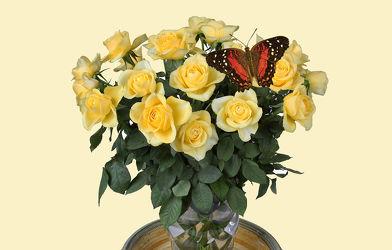 Bild mit Blumen, Rosen, Schmetterlinge, Blätter, Blume, Rose, Blatt, Floral, Stilleben, Blüten, Florales, Schmetterling, blüte, vase
