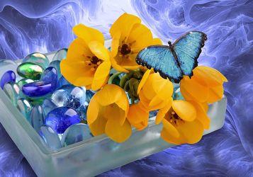 Bild mit Pflanzen, Himmel, Wolken, Blumen, Blume, Pflanze, Floral, Blüten, Florales, Schmetterling, blüte