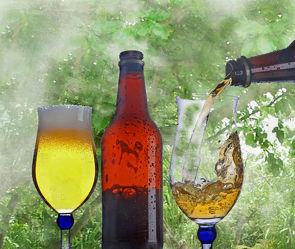 Bild mit Bäume, Trinken, Baum, Bier, garten, getränk, bierglas
