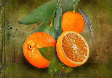 Bild mit Orange, Früchte, Essen, Orangen, Obst, Food, Stilleben, Textur, Küche, Apfelsine, Apfelsinen, kochen