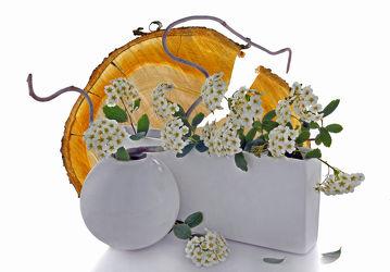 Bild mit Pflanzen, Blumen, Holz, Blume, Pflanze, Floral, Stilleben, Blüten, Florales, Wellness, blüte, Kugel, zen, vase