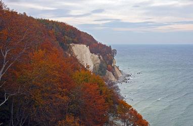 Steilküste im Herbstkleid 1