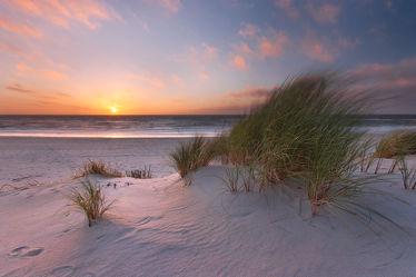 Licht im Sand