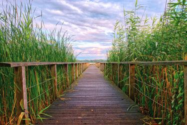 Bild mit Sonnenuntergang, Sonnenaufgang, Schilf, Lübecker Bucht, Steg, Schilfgras, Holzsteg, Timmendorfer Strand, Hemmelsdorfer See