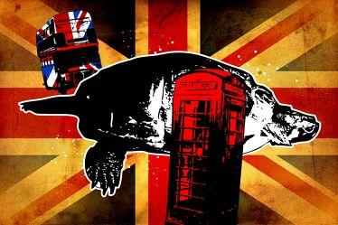 London Panorama Pop art 092