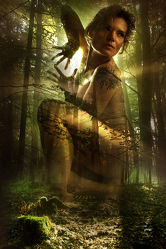 Akt - Sommer im Wald