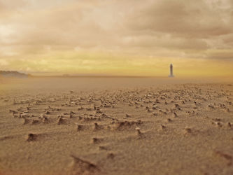 Bild mit Sonnenuntergang, Urlaub, Sommer, Sonnenaufgang, Sonne, Möwen, Strand, Meer, Dünen, Möwe, See, Möve, Leuchtturm, Möven