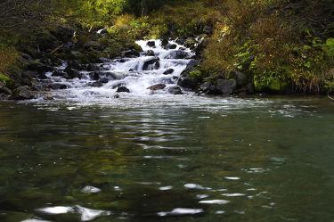 Bild mit Natur,Landschaften,Wälder,Flüsse,Felsen,Wald,Landschaft,Steine,Bach,Wasserfall,Fluss,Gestein,Bäche,Fels
