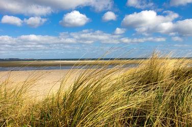 Bild mit Natur,Strände,Urlaub,Sonne,Strand,Sandstrand,Ostsee,Meer,Dünen,Dünengras,Strandhafer