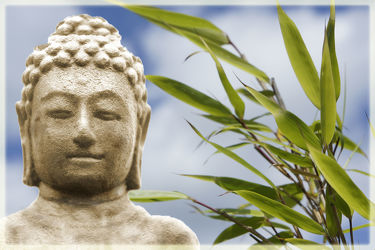 Bild mit Himmel, Bambus, Meditation, Ruhe, Entspannung, Buddha, Wellness, Spa, zen
