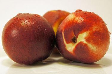 Bild mit Früchte, Lebensmittel, Küchenbild, KITCHEN, Küche, Nektarinen