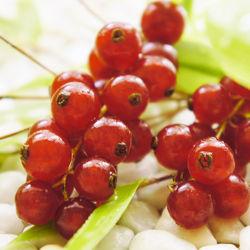 Bild mit Früchte, Lebensmittel, Beeren, Frucht, Obst, Küchenbild, Küchenbilder, KITCHEN, Küche, Johannisbeeren, Beere, Johannisbeere