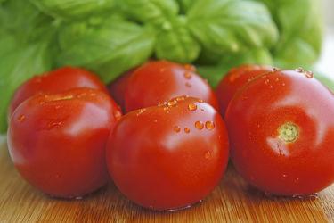 Bild mit Früchte, Lebensmittel, Tomate, Tomaten, Küchenbild, Küchenbilder, Küche, Küchen, Basilikum