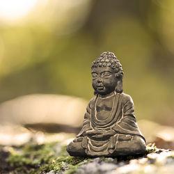 Buddha Relax quadratisch