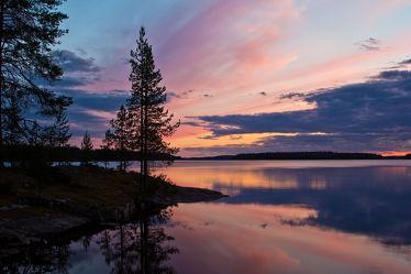 Bäume am See Lentua, Finnland 2