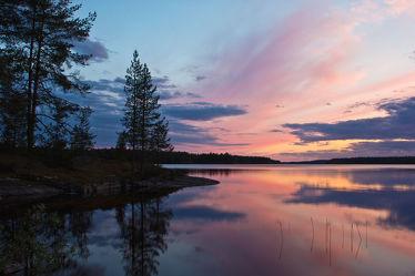Bäume am See Lentua, Finnland