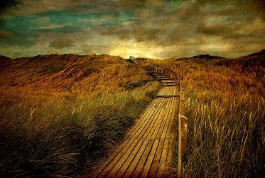 Bild mit Holz, Sand, Strand, Sandstrand, Ostsee, Weg, Düne, Dünen, Steg, Nordsee, Holzsteg, Textur, Strandhafer, Stege, holzstege