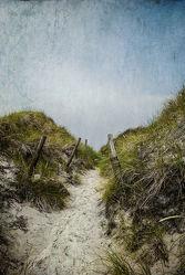 Bild mit Strände, Urlaub, Strand, Meer, Düne, Dünen, Dünengras, See, Strandhafer