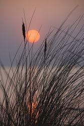 Bild mit Gewässer, Strände, Sonnenuntergang, Sonnenaufgang, Strand, Meer, Düne, Dünen, Dünengras, Meditation, Ruhe, Am Meer, Stille, Strandhafer