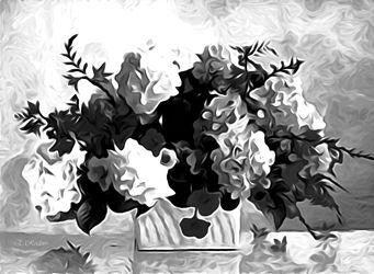 Bild mit Natur, Pflanzen, Blumen, Blume, Pflanze, Black and White, schwarz weiß, SW