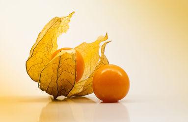 Bild mit Früchte, Frucht, Obst, Küchenbild, KITCHEN, Physalis, Küche