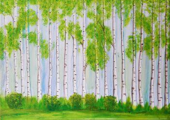 Bild mit Natur, Landschaften, Bäume, Wald, Baum, Birke, Blätter, Landschaft, Birkenwald, Gras, Blatt, Ast, Rinde, birkenbaum, Birkenwäldchen