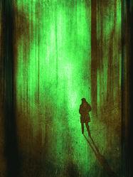 Bild mit Kunst, Wald, yammay waldig, Schatten, Silhouette, natur kunst