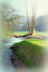 Bild mit Landschaften, Fluss