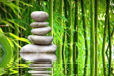 Bild mit Wasser, Stein, Bambus, Steine, gestapelte Steine, Ruhe, Entspannung, Wellness, Wellness, Spa, bambuswald, steinpyramide, Bambusblätter, Steinhaufen, zen, steinturm, steinmännchen