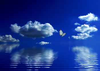 Bild mit Natur, Wasser, Himmel, Wolken, Schmetterlinge, Wolkenhimmel, Schmetterling, Wasserspiegelung
