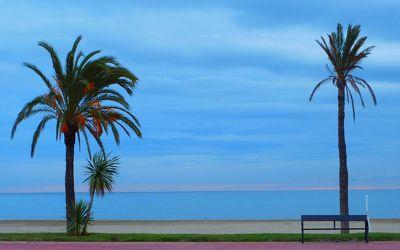 Bild mit Strände, Sand, Palmen, Sonne, Strand, Sandstrand, Meer, Mittelmeer, Palme, Sand und Meer