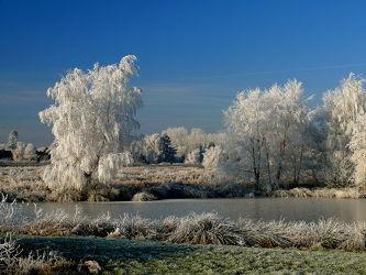 Bild mit Himmel,Winter,Blau,Winterzeit,Ostfriesland,Rauhreif,Nebelauflösung,Azur,Raureif