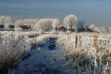 Bild mit Gräser, Bäume, Winter, Eis, Landschaft, Winterzeit, Bauernhaus, Rauhreif, Raureif, Wassergräben